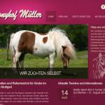 ponyhof-mueller